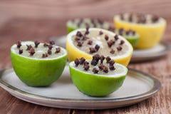 Citron och limefrukter med kryddnejlikor, naturlig krypimpregneringsmedel arkivfoto