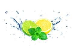 Citron- och limefruktfärgstänk royaltyfri bild