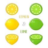Citron- och limefruktillustrationer Arkivfoto