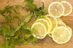 Citron och mint royaltyfria bilder