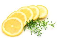 Citron och rosmarinar royaltyfria foton