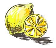 Citron och skiva för klottertecknad filmvektor royaltyfri illustrationer