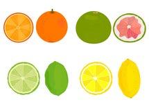 citron Citron, orange, pamplemousse, chaux Vecteur illustration stock