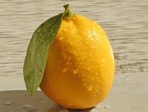 Citron på en grå färgbakgrund royaltyfri bild