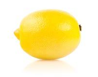 Citron på vit bakgrund Arkivfoto