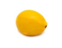 Citron på en vitbakgrund Fotografering för Bildbyråer