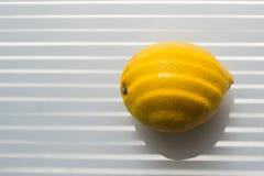 Citron p? f?nsterbr?dan royaltyfria bilder