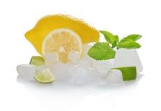 Citron, skivor av en saftig limefrukt, mintkaramell och isen royaltyfri bild