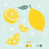 Citron, tranche de citron avec des fleurs et feuilles Illustration de vecteur Photos stock