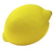 citron - yellow royaltyfri fotografi