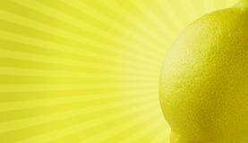 citronaktig godhet royaltyfri bild