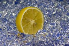 citronella Zdjęcie Royalty Free