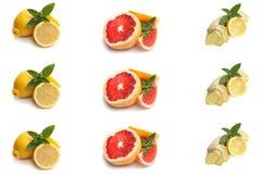 Citronen grapefrukten, ingefära rotar, med mintkaramellen på en vit bakgrund Royaltyfria Foton