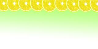 Citronen halverar bakgrund med utrymme för text på en vit backgroun Royaltyfri Foto