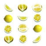 citroner stock illustrationer