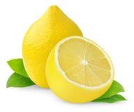 citroner royaltyfria foton
