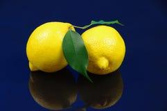 Citroner. Royaltyfri Fotografi