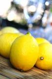 citroner Fotografering för Bildbyråer