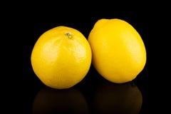 Citroner grupperar isolerat på svart Royaltyfri Foto