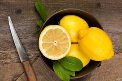 Citroner i en bunke Royaltyfri Fotografi