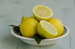Citroner i ett keramiskt pläterar. Royaltyfria Foton