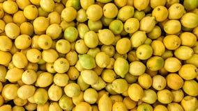 Citroner i löst royaltyfria bilder