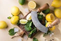 Citroner, limefrukter och mint arkivfoto