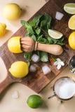 Citroner, limefrukter och mint Royaltyfri Bild
