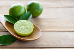 Citroner med det gröna bladet Royaltyfri Foto