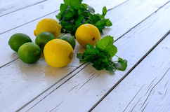 Citroner och limefrukt Royaltyfria Foton