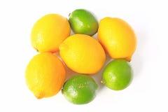 Citroner och limefrukter Fotografering för Bildbyråer