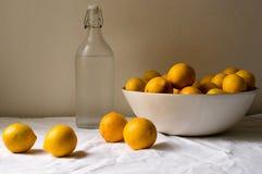 Citroner på en tabell Royaltyfri Fotografi