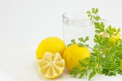 Citroner persilja och exponeringsglas av vatten Sunt abstrakt begrepp Arkivbild