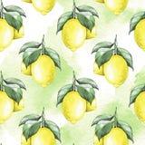 citroner Sömlös modell 3 för vattenfärg Royaltyfria Bilder