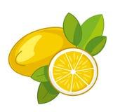 Citroner som isoleras på white stock illustrationer