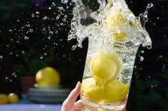Citroner som plaskar in i vatten Arkivbild