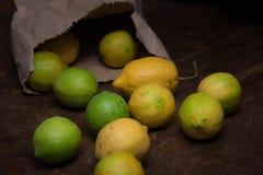 Citroner ut ur pappers- påse Fotografering för Bildbyråer