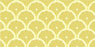 Citronfruktbakgrund Sunt matbegrepp på isolerad bakgrund Royaltyfri Bild