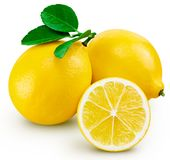 Citronfruktblad arkivfoto