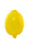 Citronhälsa Arkivfoto