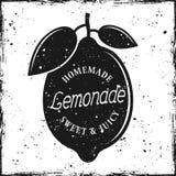 Citronkontur med hemlagad lemonad för text Vektor Illustrationer