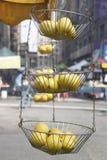 Citronkorg royaltyfria foton