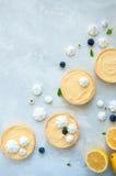 Citronkräm- och blåbärdriftstopptarts Arkivbilder