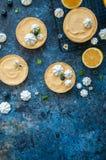 Citronkräm- och blåbärdriftstopptarts med maräng Fotografering för Bildbyråer