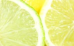 citronlimefrukt Arkivbild