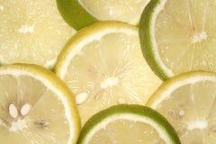 citronlimefrukt plus Arkivbild