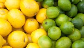 citronlimefrukter Arkivbild