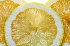 Citronmakro Arkivbilder