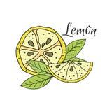 citronobjekt för tecknad film 3d över fotowhite Fotografering för Bildbyråer