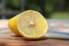 Free Citrons Royalty Free Stock Photo - 10653265